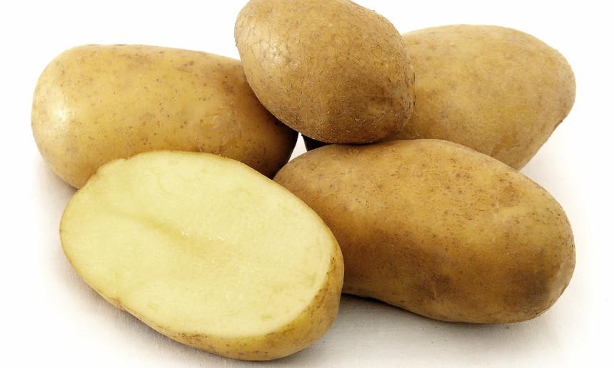 Fondation OLO | Découvrir les aliments | Pomme de terre