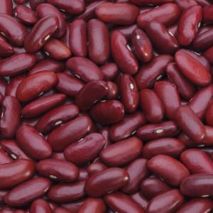 Haricots (légumineuses)