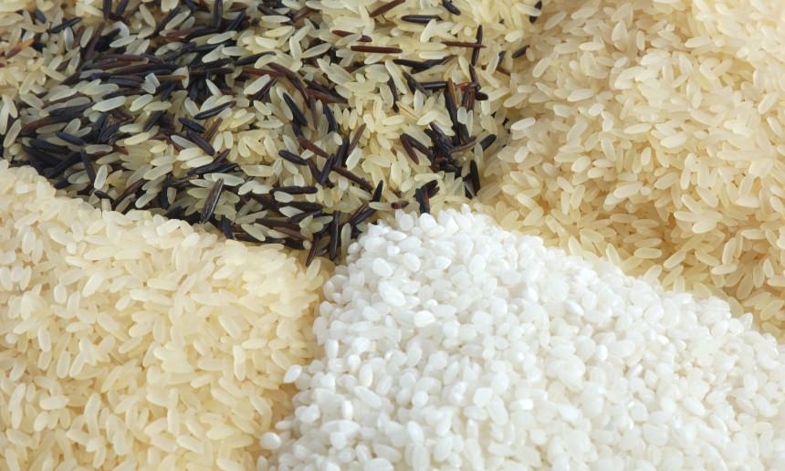 Fondation OLO | Découvrir les aliments | Le riz