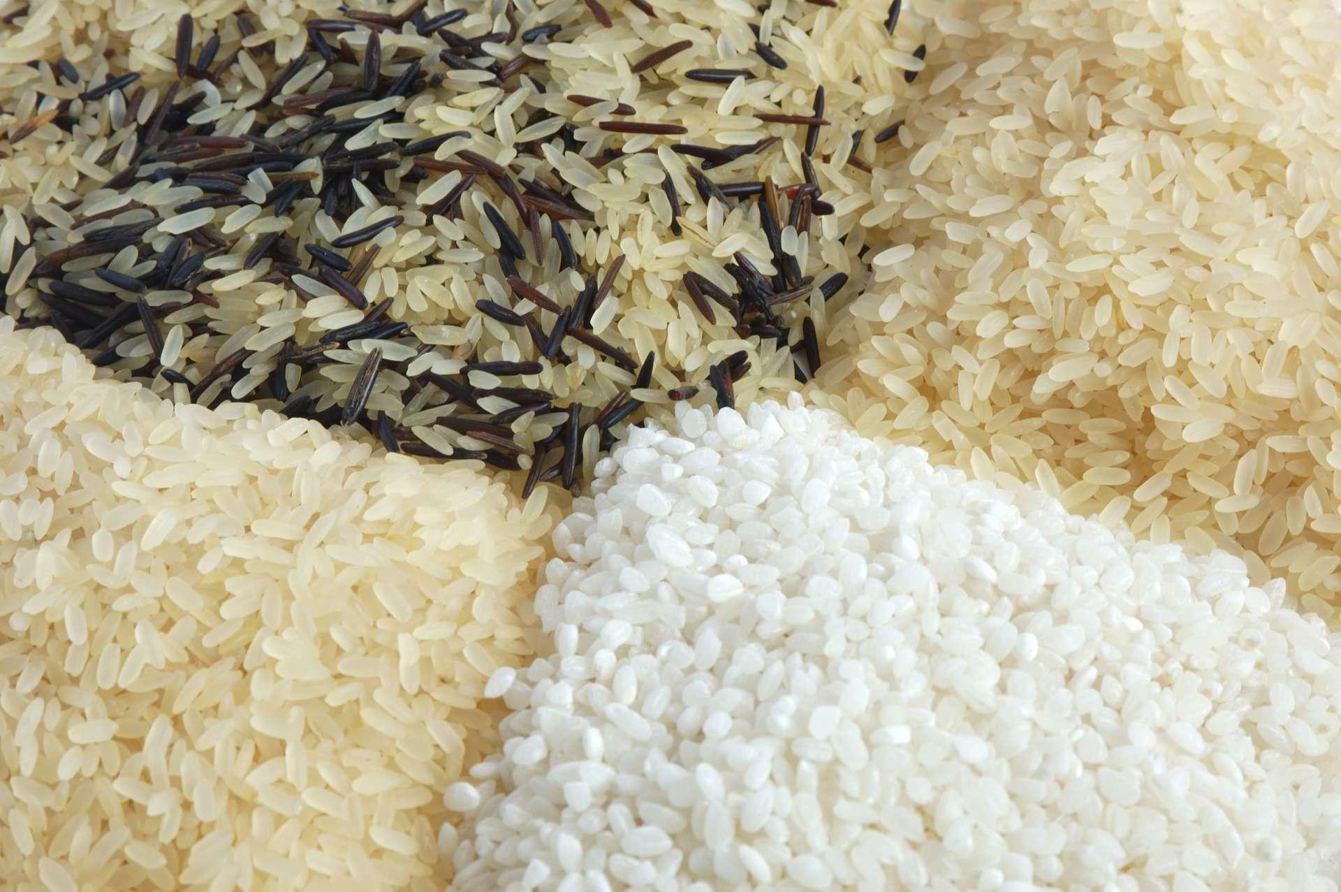Le riz infos trucs astuces et recettes fondation olo - Cuisiner du riz blanc ...