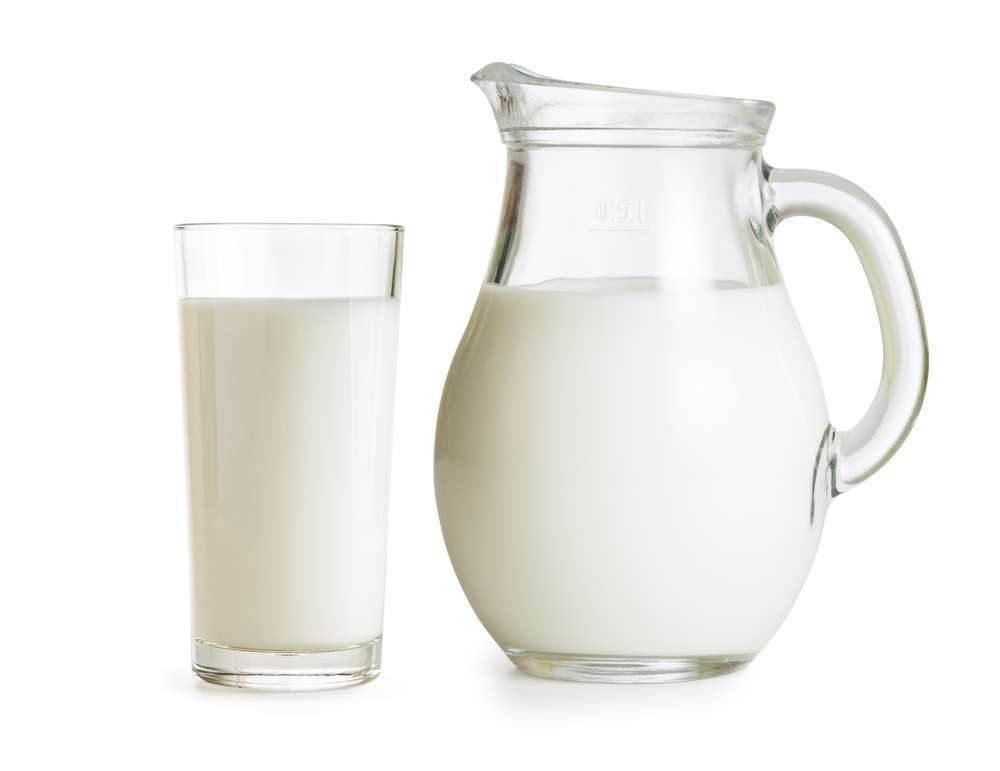 The milk |  All about this dairy product |  Olo Foundation