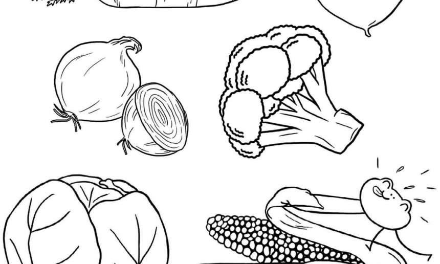 Fondation OLO | Coloriage | Les légumes