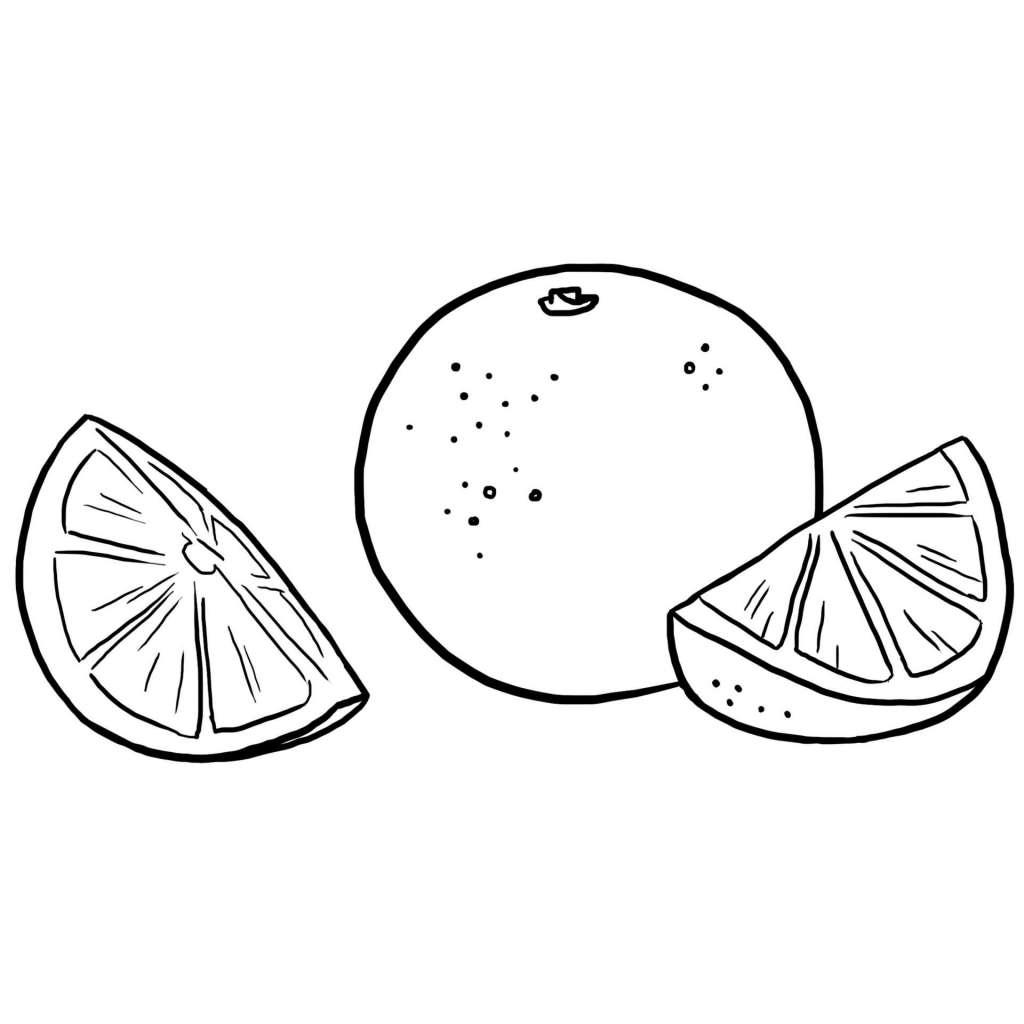 Coloriage des aliments l 39 orange jeux et outils - Jeux et coloriage ...