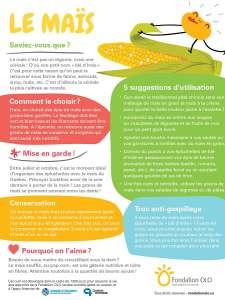 Fondation OLO   Infographie   Le maïs