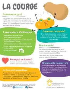 Fondation OLO   Infographie   La courge