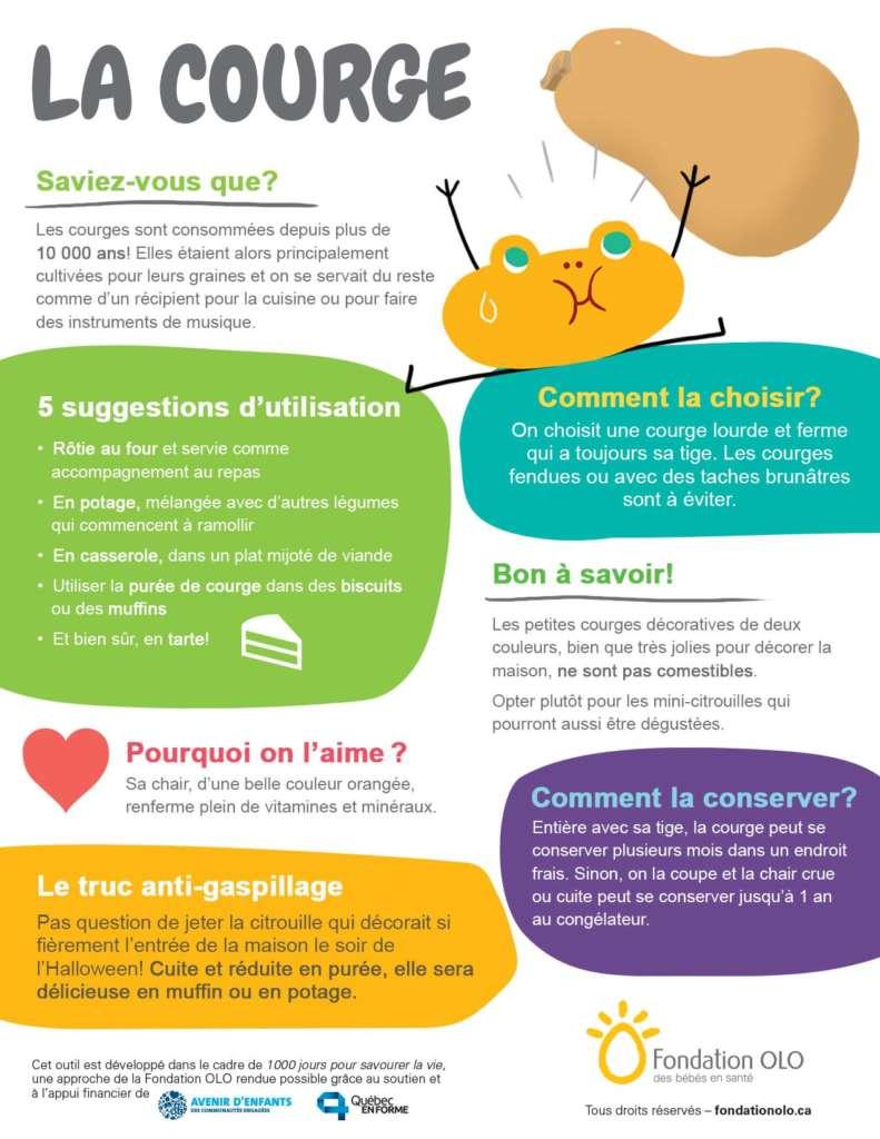 Fondation OLO | Infographie | La courge