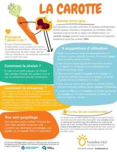 Fondation OLO   Découvrir les aliments   Carotte   Infographie