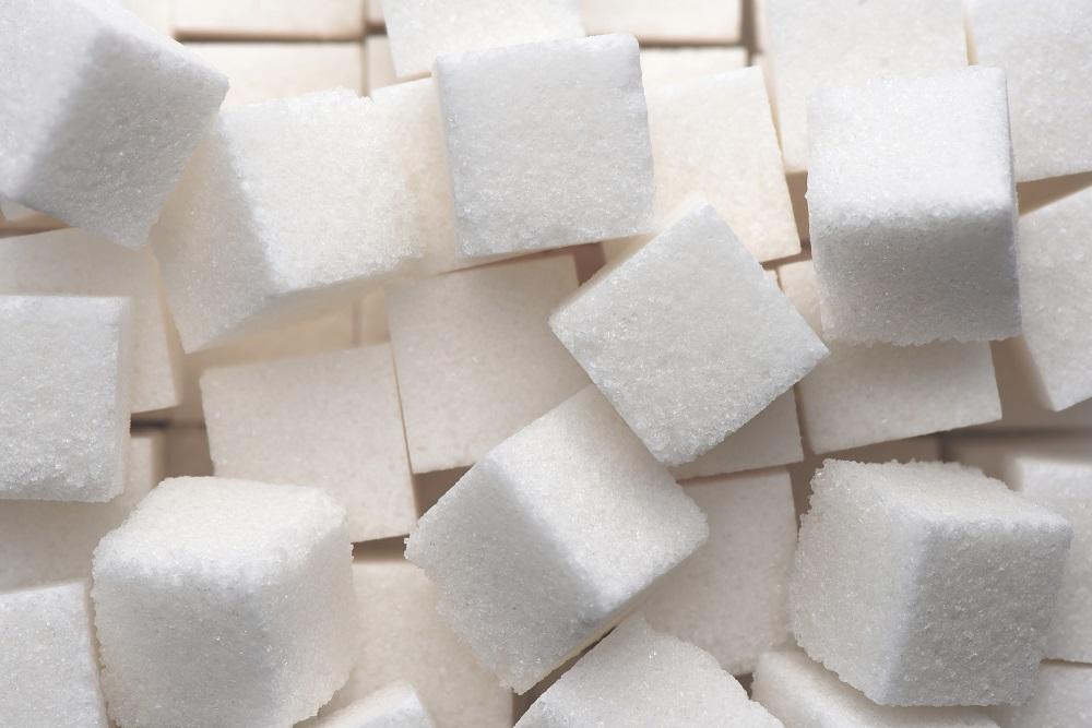 Fondation OLO | Le sucre, c'est quoi?