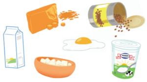 Fondation Olo | Enfant végétarien - aliments