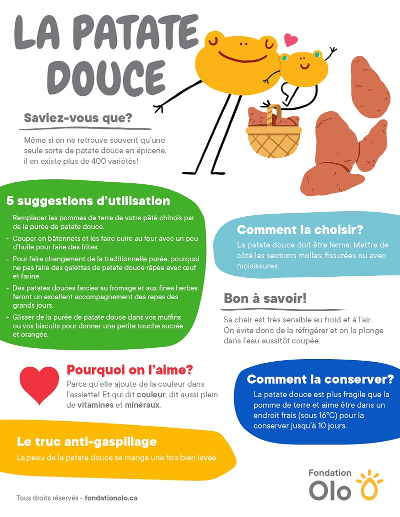 Fondation Olo | Infographie | Patate douce
