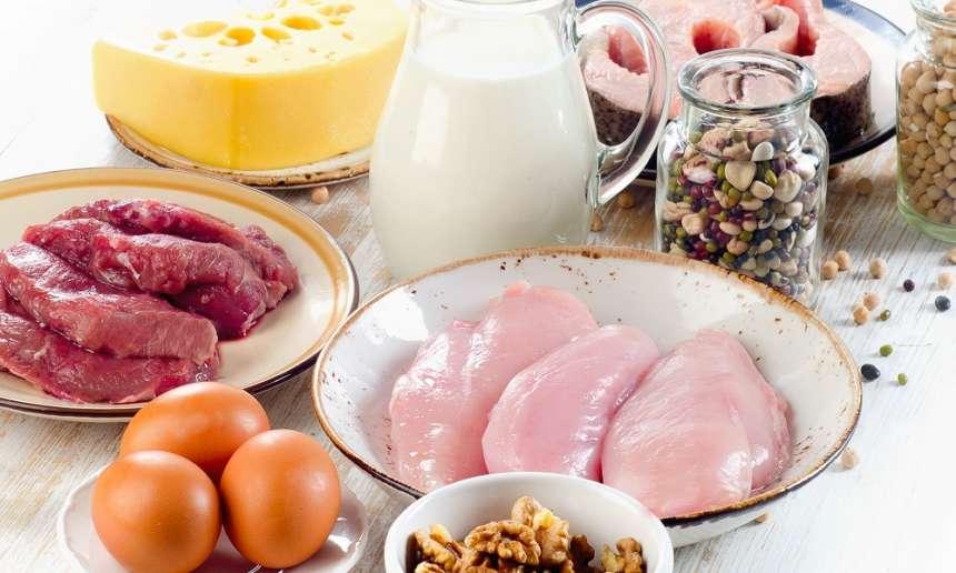 Fondation Olo | Les aliments protéinés : c'est quoi?