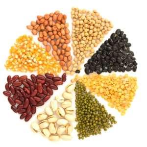 Fondation Olo   Les aliments protéinés : c'est quoi?   Protéines végétales