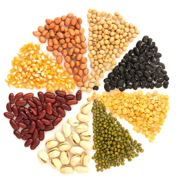 Fondation Olo | Les aliments protéinés : c'est quoi? | Protéines végétales