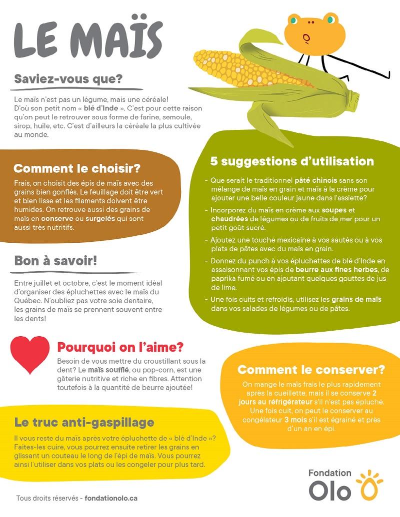 Fondation Olo | Infographie | Le maïs