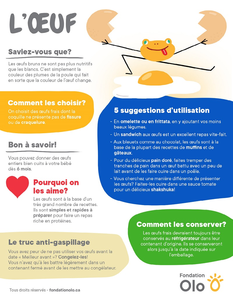 Fondation Olo | Infographie | L'oeuf