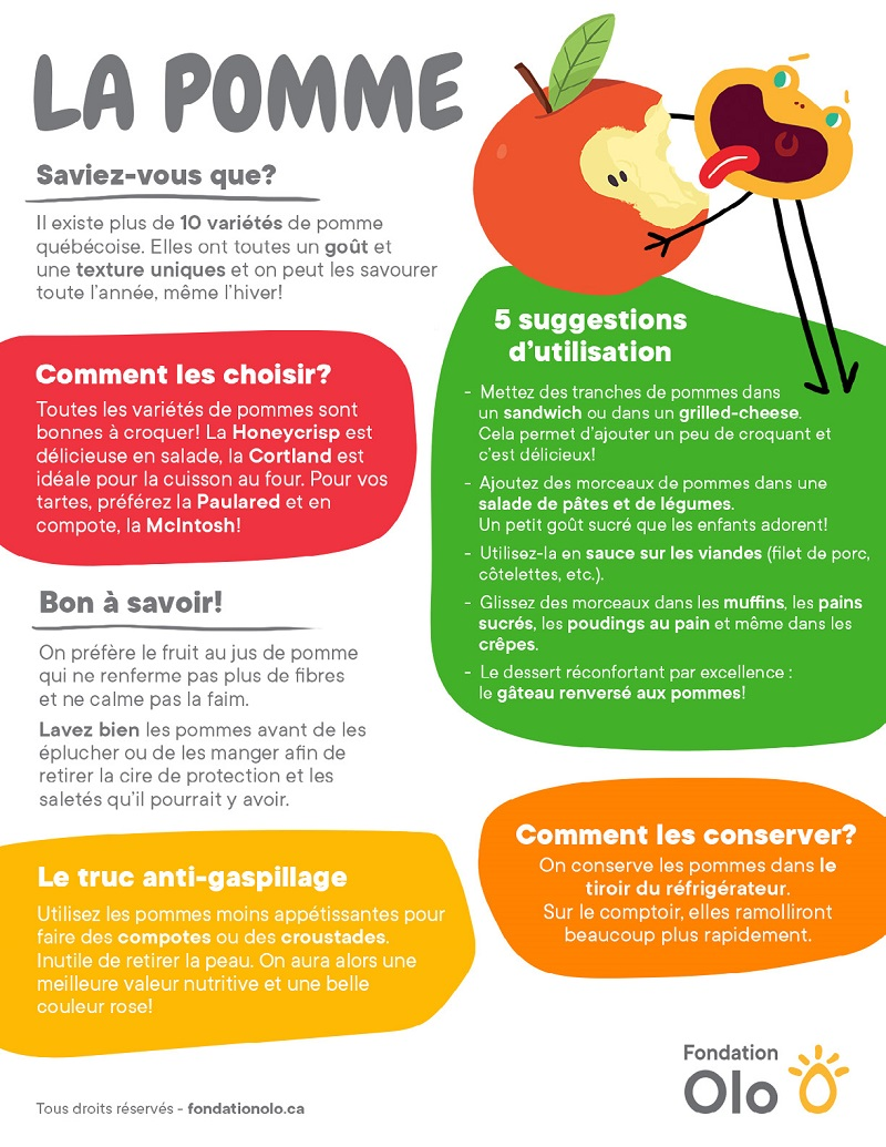 Fondation Olo | Infographie | La pomme