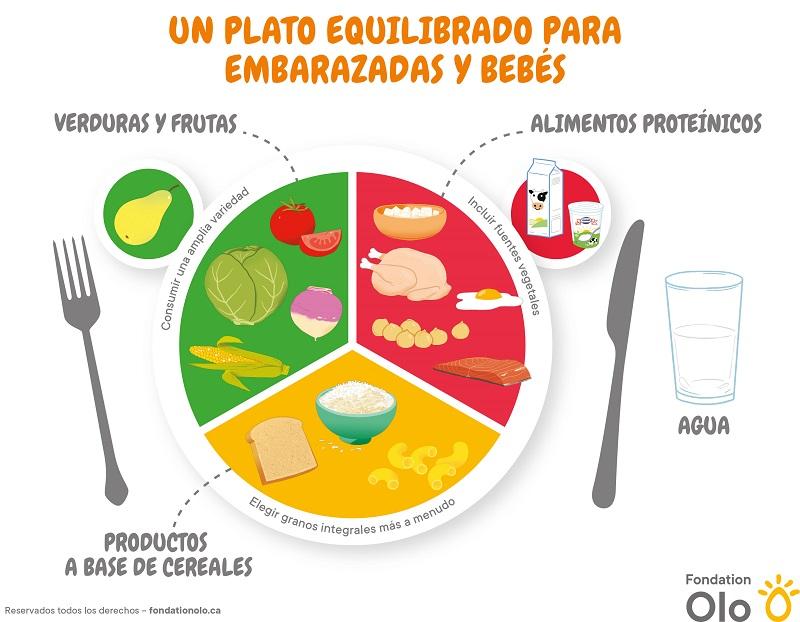 Fondation Olo | Outil | Assiette équilibrée | Espagnol